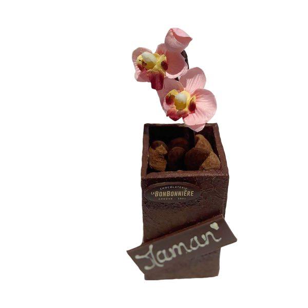 fleurs chocolat