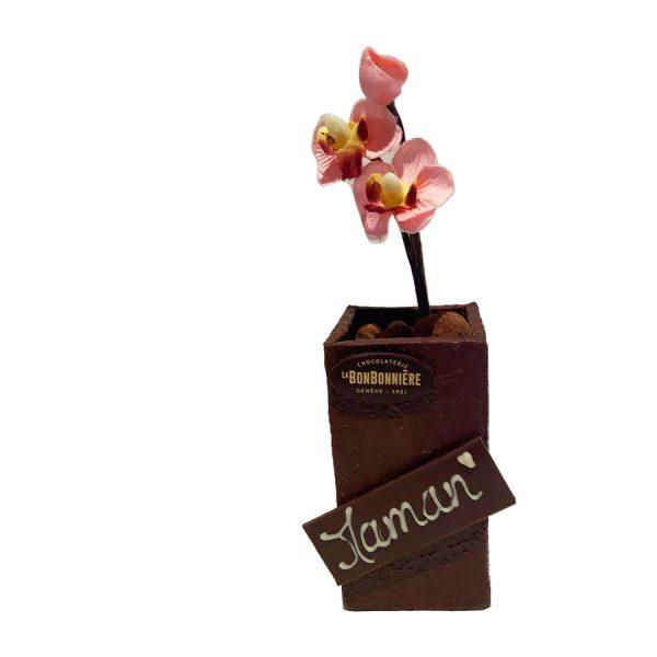 chocolat fete des meres