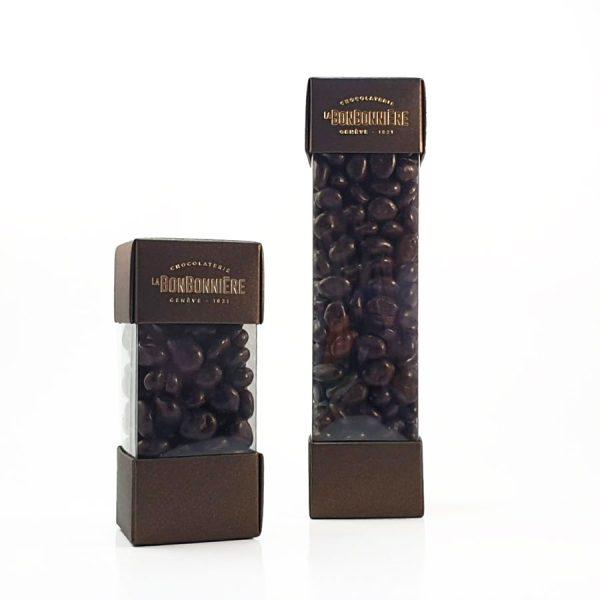 raisin chocolat